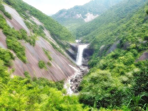 Yakushima National Park